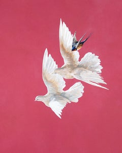 Doves and Swallow - Roseate - Animal painting - contemporary