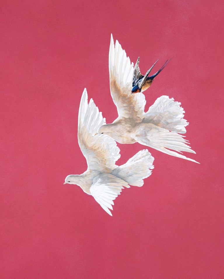 Tim Hayward Animal Painting - Doves and Swallow - Roseate - Animal painting - contemporary