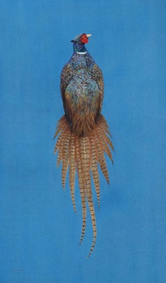 Ring-Necked Pheasant - Azure