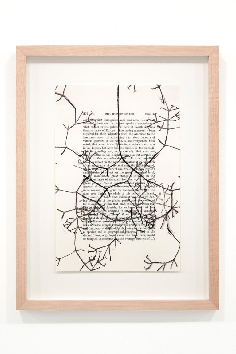 Tim Rollins and K.O.S. Abstract Drawing - Studies for ON THE ORIGIN OF SPECIES (after Darwin)