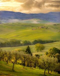Early Morning Light, Tuscany