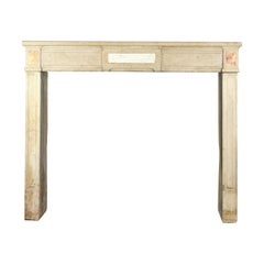 Timeless Chique Reclaimed French Fireplace Surround