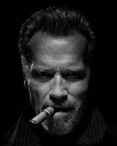 Arnold Schwarzenegger, 2012