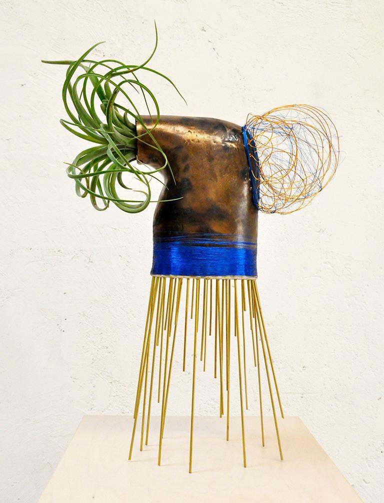 Monty J's otherworldly living sculptures create a dreamlike sculptural interpretation of the natural world.