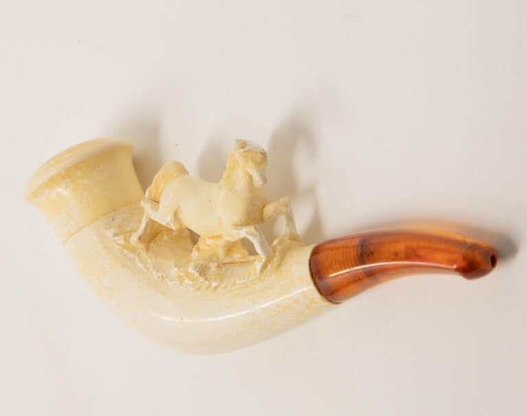 Tobacco Pipe with Horse Carving and Case For Sale 2