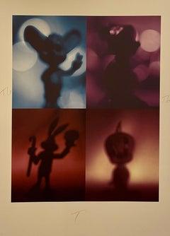 Color Iris Photo Print Conceptual Shadow Cartoons Polyptych Photograph Todd Gray