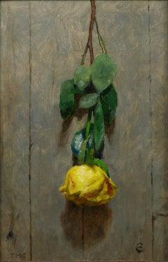 Todd M. Casey, Yellow Rose