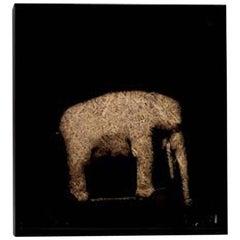 21st Century and Contemporary Contemporary Art