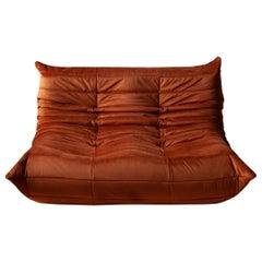 Togo 2-Seat Sofa in Amber Velvet by Michel Ducaroy for Ligne Roset