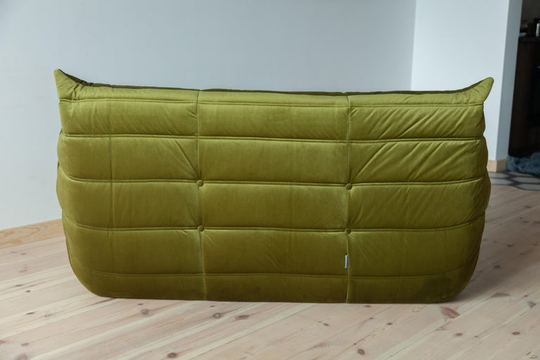 Togo 2-Seat Sofa in Green Velvet by Michel Ducaroy for Ligne Roset In Excellent Condition For Sale In Berlin, DE