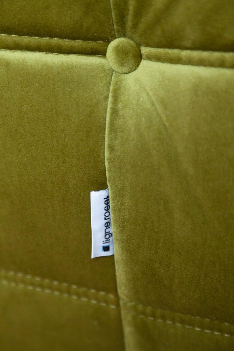 Late 20th Century Togo 2-Seat Sofa in Green Velvet by Michel Ducaroy for Ligne Roset For Sale