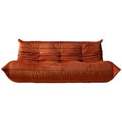 Togo 3-Seat Sofa in Amber Velvet by Michel Ducaroy for Ligne Roset