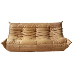 Togo 3-Seat Sofa in Camel Brown Leather by Michel Ducaroy for Ligne Roset