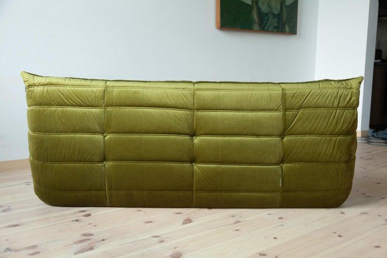 Late 20th Century Togo 3-Seat Sofa in Green Velvet by Michel Ducaroy for Ligne Roset For Sale