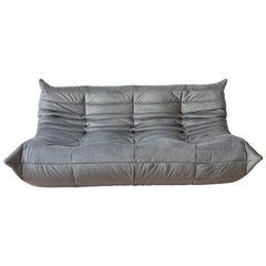 Togo 3-Seat Sofa in Grey Velvet by Michel Ducaroy for Ligne Roset