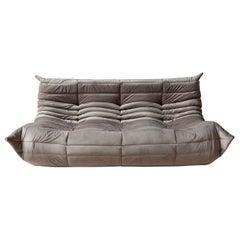 Togo 3-Seat Sofa in Pinkish Grey Velvet by Michel Ducaroy for Ligne Roset