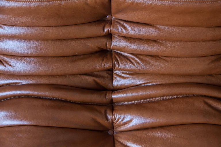 Togo 3-Seat Sofa in Whiskey Leather by Michel Ducaroy for Ligne Roset For Sale 6