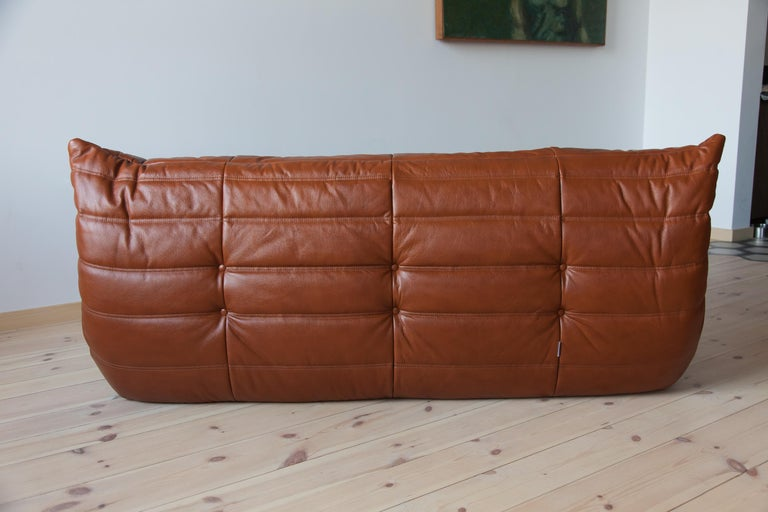Togo 3-Seat Sofa in Whiskey Leather by Michel Ducaroy for Ligne Roset For Sale 2
