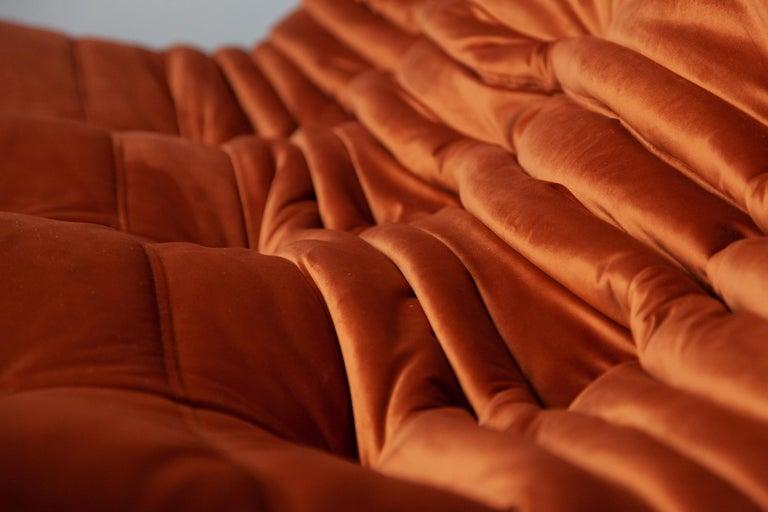 Togo Living Room Three-Piece Set in Velvet by Michel Ducaroy for Ligne Roset For Sale 9