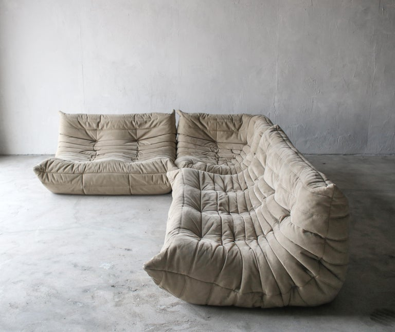 Fabric Togo Loveseat Sofa by Ligne Roset For Sale