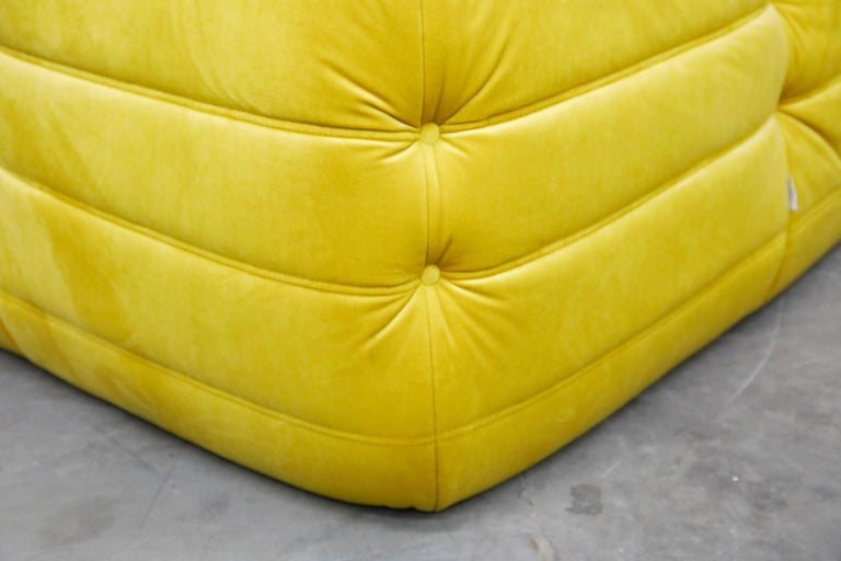 Togo Sectional Three-Piece Set by Michel Ducaroy for Ligne Roset in Gold Velvet For Sale 14