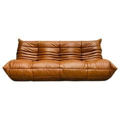 Togo Sofa in Dark Brown Cognac Leather by Michel Ducaroy for Ligne Roset