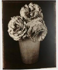 Large Format Vintage Floral Black & White Silver Gelatin Photograph Tom Baril