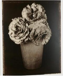 Large Format Vintage Floral Black & White Silver Gelatin Photograph Tom Baril