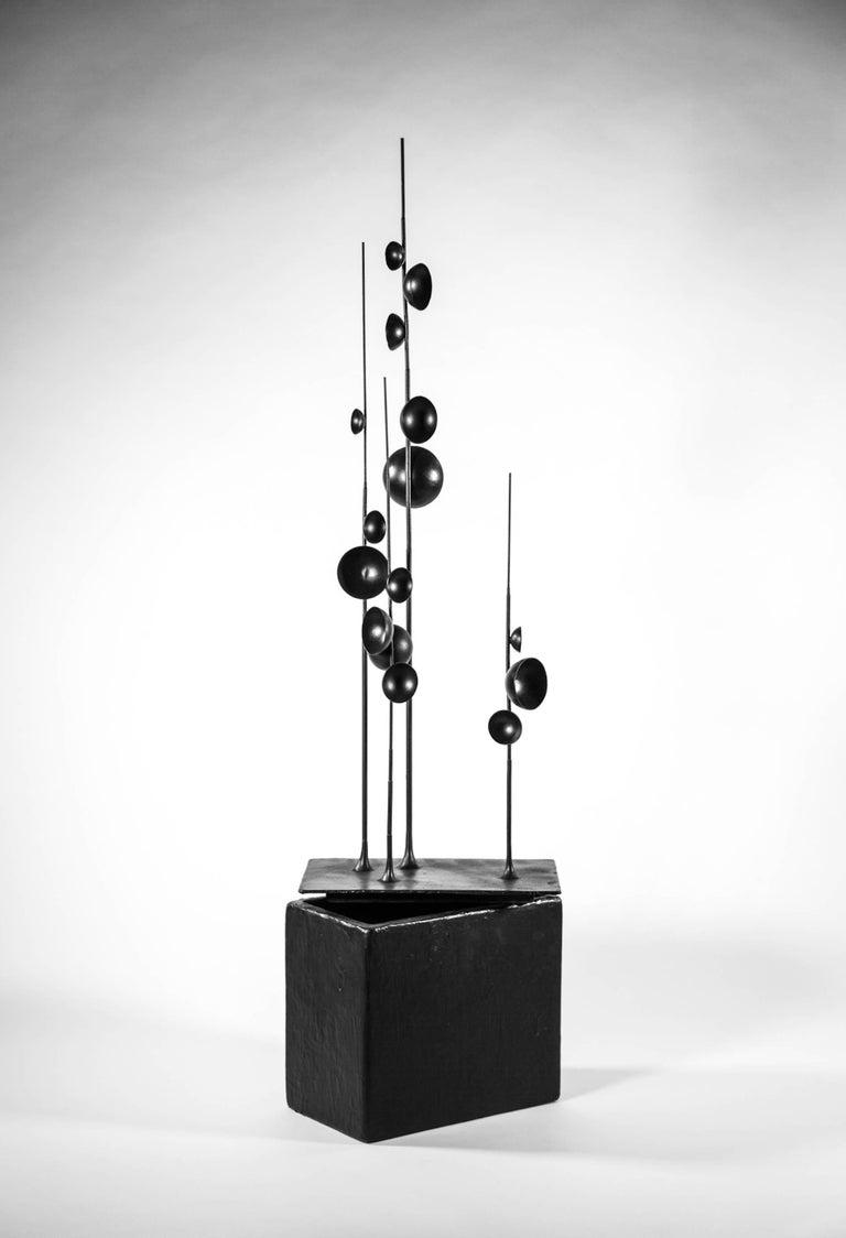 Blossfeldt Station I by Tom Palmer  [Lidded box - rubber coated gilding metal]