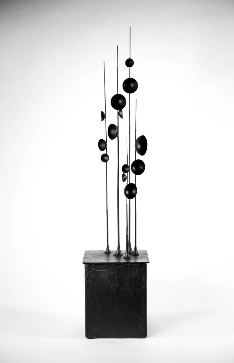 Blossfeldt Station II by Tom Palmer  [Lidded box - rubber coated gilding metal]