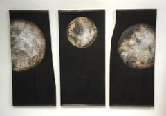 Quercus - Wall Mounted Moon Triptych