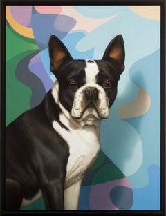 Tom Palmore, Mr Bentley Loves Modern Art, acrylic, oil on canvas; Boston Terrier