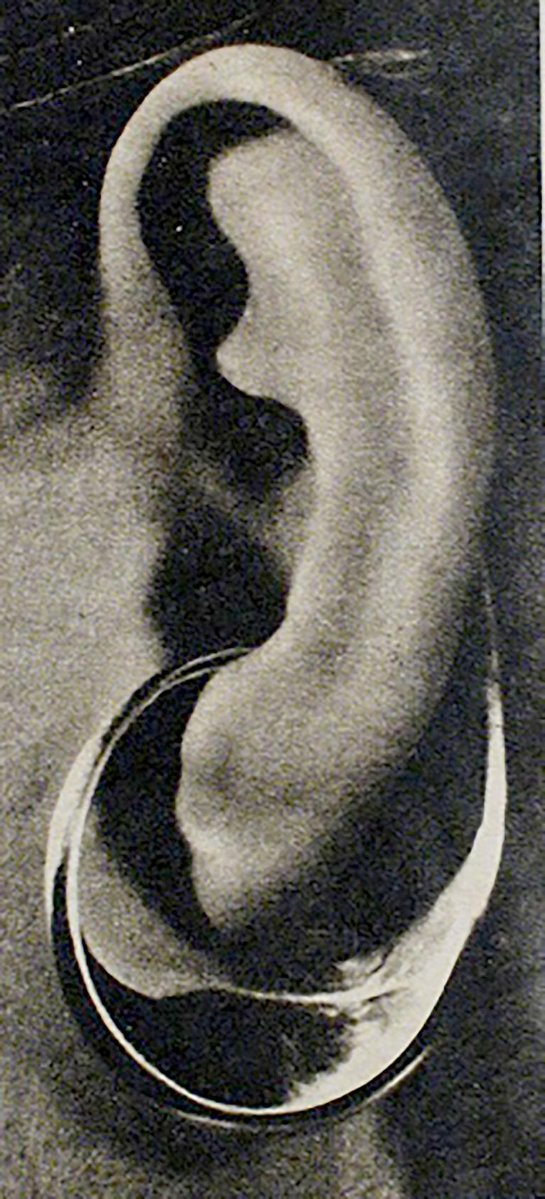 Tone Vigeland for Plus Sterling Silver Norwegian Modernist Sling Earrings For Sale 2