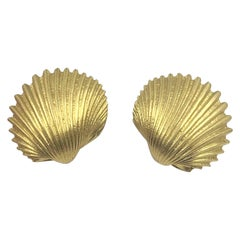 Tony White Yellow Gold Shell Form Earrings
