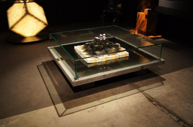Contemporary Too Much? II Unique Designer Money Burning Centre Table, Art Table For Sale