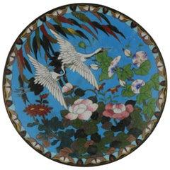 Top and Large Antique Bronze/Copper Cloisonné Dish Plate Japan 19th Century Bird