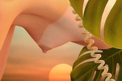 Galatea 4 - Contemporary photography, Nude, Pop Art, Swiss cheese plant, Sunset