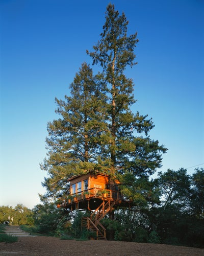 Fisher Weisman - Sonoma Tree House