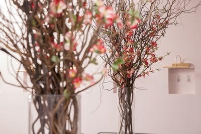 Cochineal Design - Swoonery.com Flagship Showroom