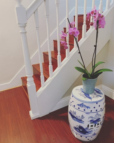 Christine Joy Studio - San Francisco Botanical House