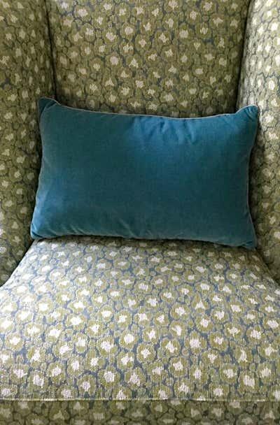 Transitional Living Room. Craving Color by Hillside Manor Decor, LLC.