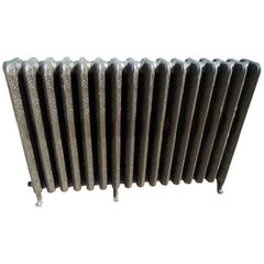 Traditional 2 Columns Art Nouveau Style Cast Iron Spanish Radiator's Element