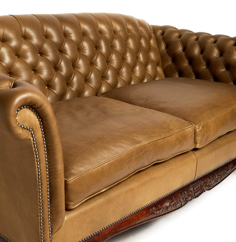Traditional English Leather Shaped Back Chesterfield Sofa For Sale 1