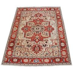 Traditional Persian Heriz 100% Wool Floral Medallion Area Rug Carpet