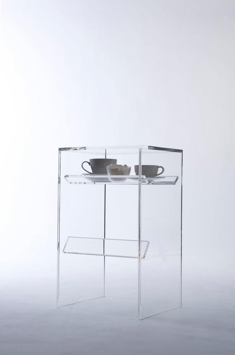 Cast Transparent Acrylic Side-Table with Multi-Purpose Sub-Seat Terrarium For Sale