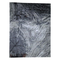 Tree Bark Wool and Silk Abstract Design with Black and Grey Rug
