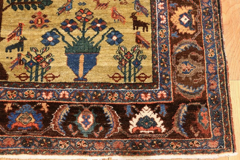 Tree of Life Antique Tabriz Persian Rug For Sale 3