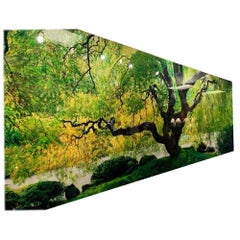 """Tree of Serenity"" Peter Lik Scenic Photograph Print"