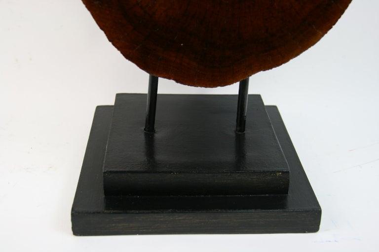 Italian Tree Segment Wood Sculpture For Sale