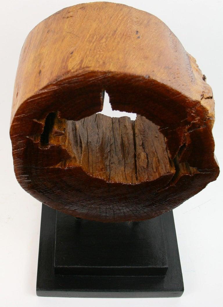 Tree Segment Wood Sculpture For Sale 1